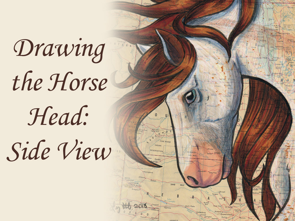 Drawing The Horse Head Side View By Lizstaley Clip Studio Tips