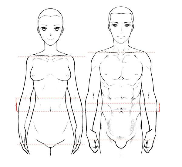 Clase De Dibujo De Figuras Masculina Y Femenina Aprenda A